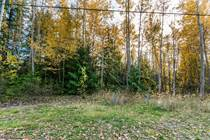 Homes for Sale in Anglemont, British Columbia $32,000