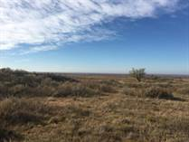 Farms and Acreages Sold in Gray County, McLean, Texas $273,790