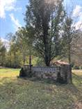 Lots and Land for Sale in Lake Cumberland, Jamestown, Kentucky $10,000