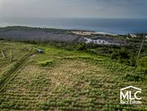 Lots and Land for Sale in Bo. Jobos, Isabela, Puerto Rico $1,200,000
