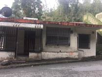 Homes for Sale in Bo. Palomas, Comerio, Puerto Rico $47,000