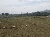 Lots and Land for Sale in Naivasha KES790,000