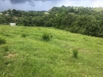 Lots and Land for Sale in BO. PIEDRAS BLANCAS, Aguada, Puerto Rico $105,000