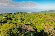 Lots and Land for Sale in Dominical, Puntarenas $1,900,000