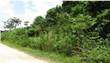 Lots and Land for Sale in Hattieville , Western Highway, Belize $19,000