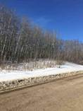 Lots and Land for Sale in Cherry Grove, Alberta $144,000