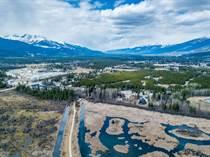 Homes for Sale in Valemount, British Columbia $3,000,000