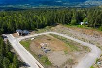 Lots and Land for Sale in Clearwater, British Columbia $29,900
