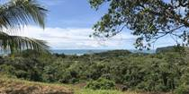 Lots and Land for Sale in Ojochal, Puntarenas $1,100,000