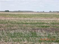 Farms and Acreages for Sale in Saskatchewan, Mccraney Rm No. 282, Saskatchewan $263,832