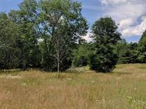 Lots and Land for Sale in Beaverton, Michigan $42,900