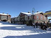Condos for Sale in Big White, British Columbia $139,900