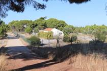 Farms and Acreages for Sale in Comporta, Grândola, Setubal €320,000