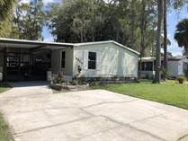 Homes for Sale in Fountainview, Tampa, Florida $73,000
