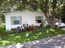 Homes for Sale in Pleasant Living, Riverview, Florida $44,900