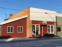 Commercial Real Estate for Sale in Birch Hills, Saskatchewan $259,000