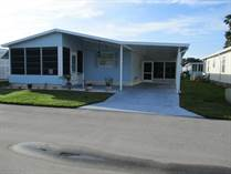 Homes for Sale in Golden Valley, New Port Richey, Florida $49,900