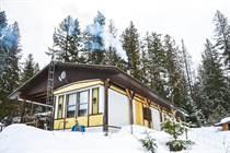 Homes for Sale in Lemon Creek, British Columbia $149,900