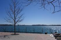Condos for Rent/Lease in Queens Quay E/ Parliament, Toronto, Ontario $1,900 monthly
