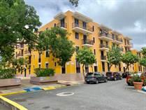 Old San Juan Rentals - Jacqueline Homar