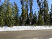 Lots and Land Sold in Tete Jaune Cache, Valemount, British Columbia $149,000