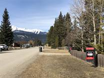 Homes for Sale in Valemount, British Columbia $59,000