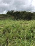 Farms and Acreages for Sale in Bo. Buena Vista Hatillo, Hatillo, Puerto Rico $120,000