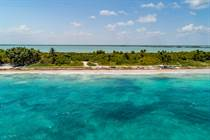 Lots and Land for Sale in Beach Tulum, Tulum, Quintana Roo $1,300,000