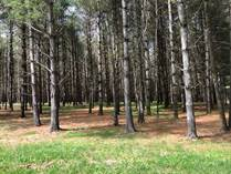 Lots and Land for Sale in Russell Springs, Kentucky $25,000