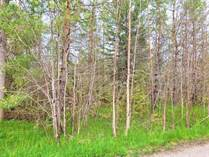 Lots and Land for Sale in Victoria Habour Beach and Marine Resort, Victoria Harbour, Ontario $179,900
