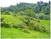 Farms and Acreages for Sale in Cerro Punta, Chiriquí  $325,000