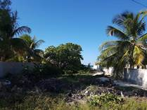 Lots and Land for Sale in Chuburna, Yucatan $129,900