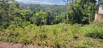 Lots and Land for Sale in Bo. Naranjo, Moca, Puerto Rico $37,000