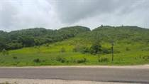 Lots and Land for Sale in San Ignacio, Cayo $275,000