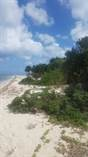 Lots and Land for Sale in South Coast, Cozumel, Quintana Roo $5,499,000