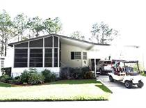 Homes for Sale in Polk County, LAKELAND, Florida $19,500