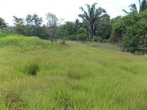 Lots and Land for Sale in Belmopan, Cayo $22,250