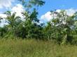 Lots and Land for Sale in Belmopan, Cayo $54,000