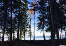 Lots and Land for Sale in Saskatchewan, Whelan Bay, Saskatchewan $329,900