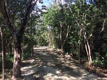 Lots and Land for Sale in Playa del Carmen, Quintana Roo $366,804