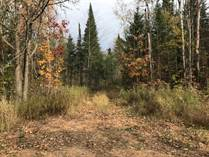 Lots and Land for Sale in Birnamwood, Wisconsin $105,000