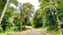 Lots and Land for Sale in Esterillos, Puntarenas $17,000