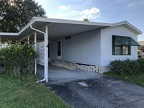 Homes for Sale in Country Wood, Plant City, Florida $4,999