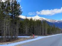 Homes for Sale in Valemount, British Columbia $139,000