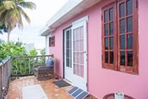 Multifamily Dwellings for Sale in Puntas Ward, Rincon, Puerto Rico $299,000