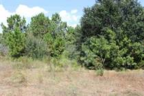 Lots and Land for Sale in Navarre, Florida $92,000