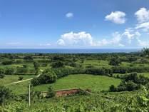 Lots and Land for Sale in Cabrera, Maria Trinidad Sanchez $72,800