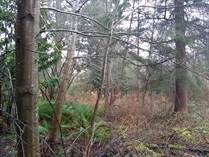 Lots and Land for Sale in Mile Hill, Port Orchard, Washington $269,000