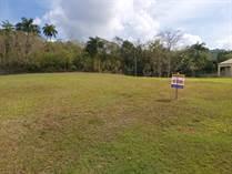 Homes for Sale in Bo. Aibonito Guerrero, Puerto Rico $79,900