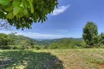 Lots and Land for Sale in Platanillo, Dominical, Puntarenas $999,000